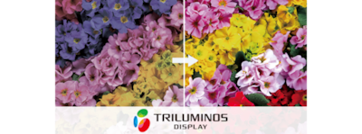 Logotip TRILUMINOS Colour