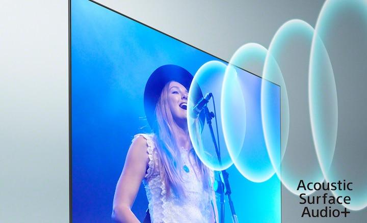 Slika pjevača na koncertu